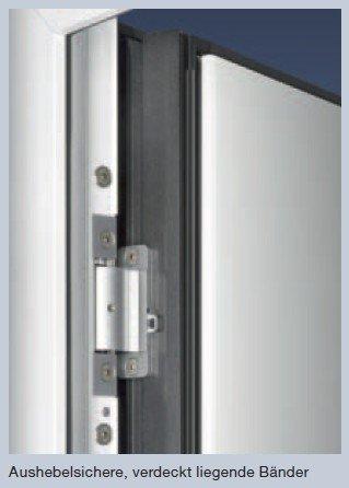 ThermoCarbon Haustüren Bänder